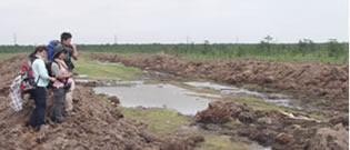 サハリンの黒川湿原でモウセンゴケの調査中